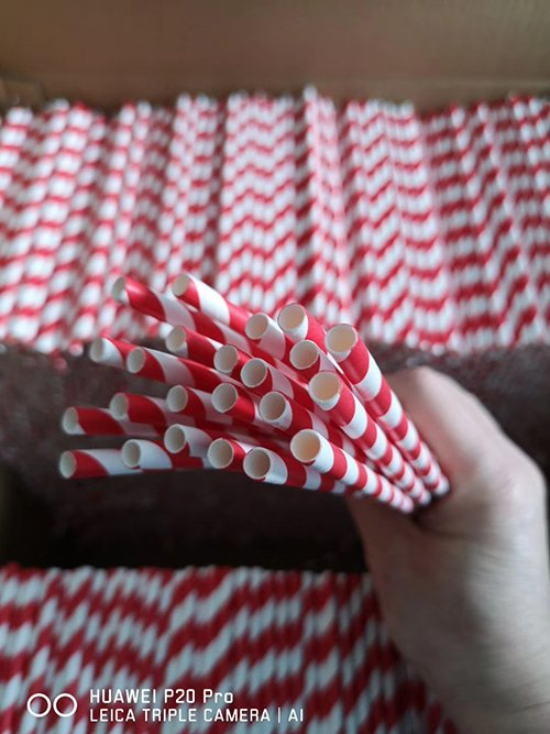 Paper Straw Production 1
