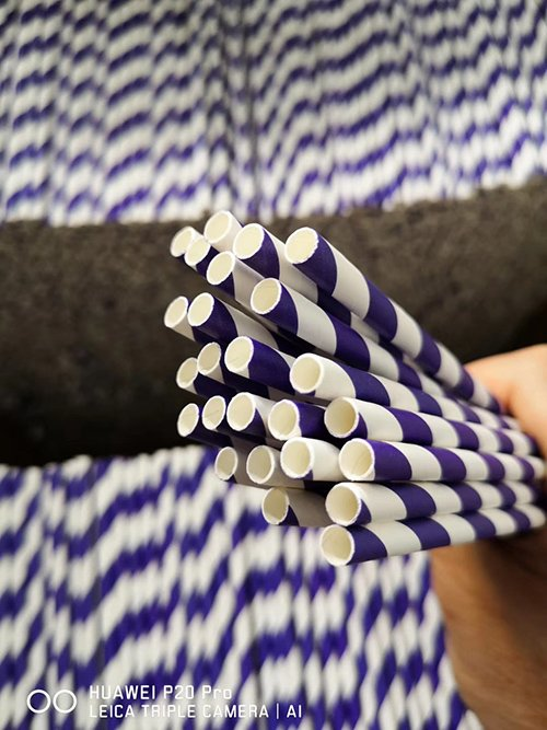 Paper Straw Production 2