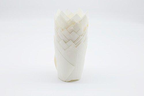 PremiumTulip Baking Cup White 2