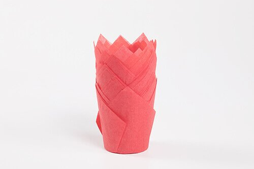 Red Tulip Baking Cup 7