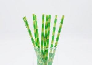 biodegradable bamboo print paper straw 1