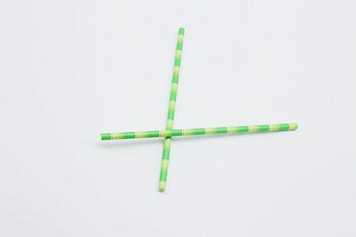 biodegradable bamboo print paper straw 2