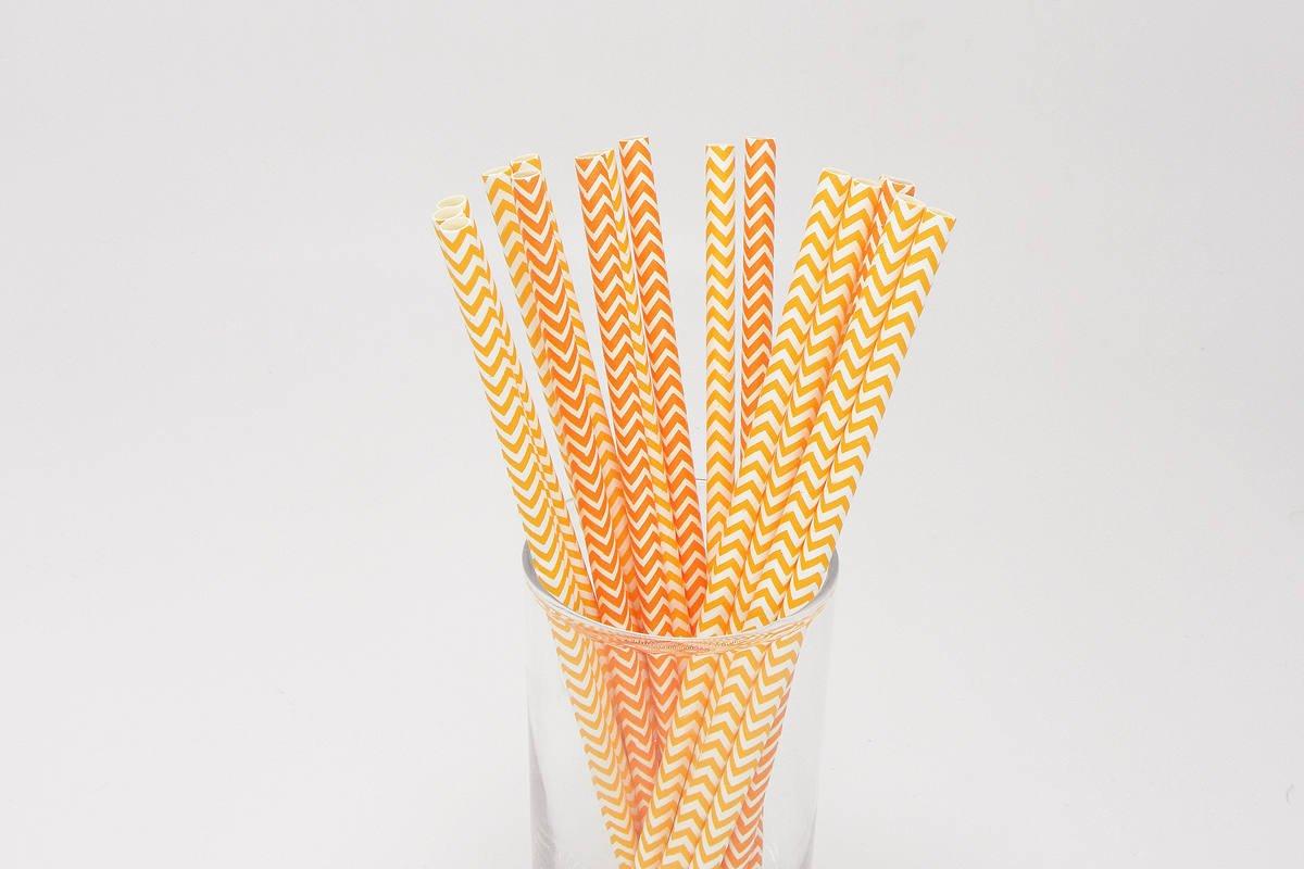 Chevron Paper Straws 5