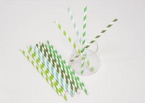 Regular Green Stripe Paper Straws 4